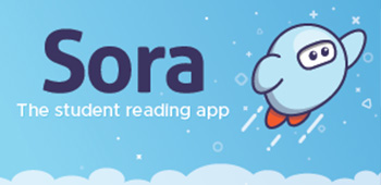 Image result for sora app